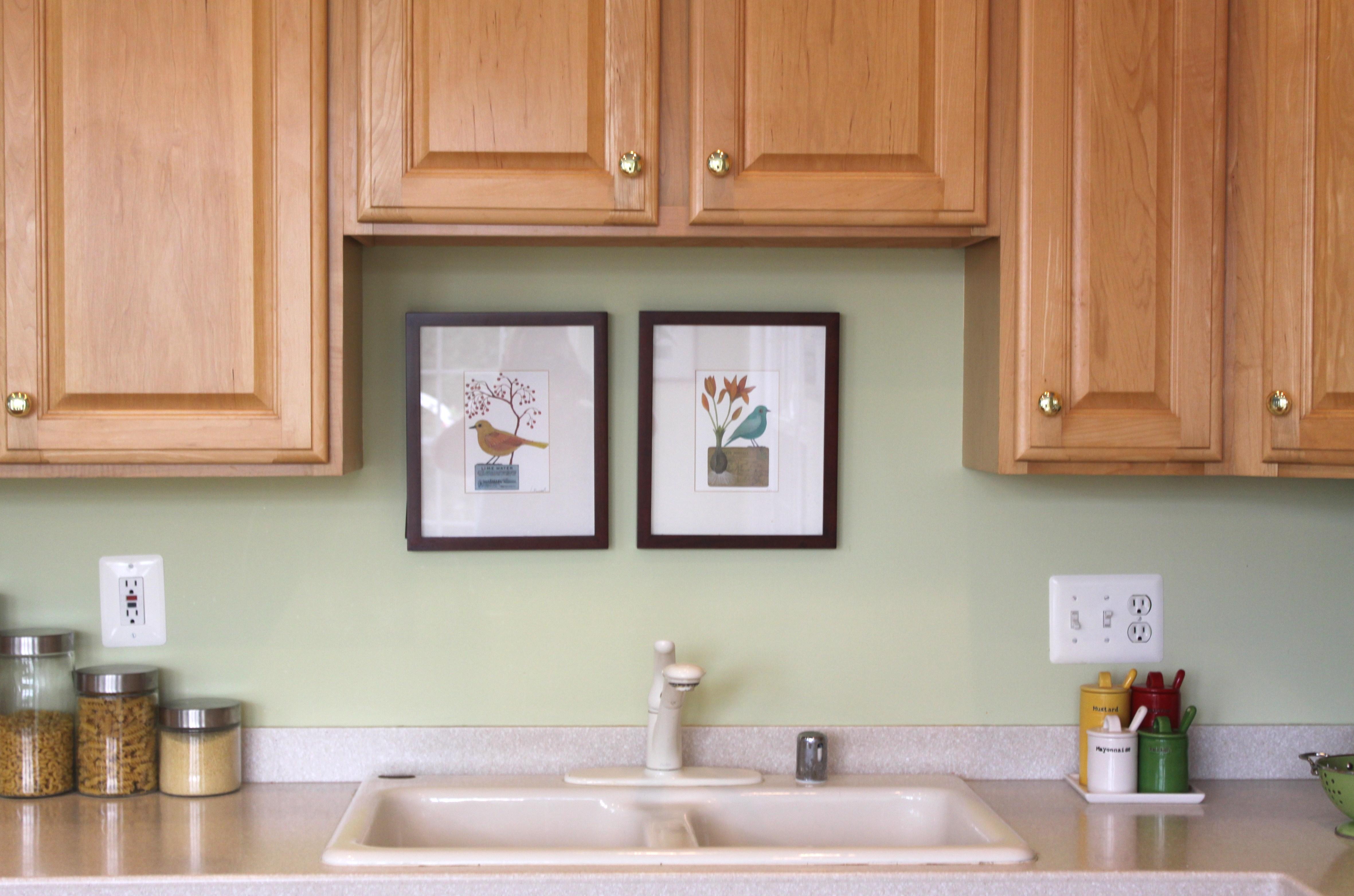 Accessible Kitchen Ideas