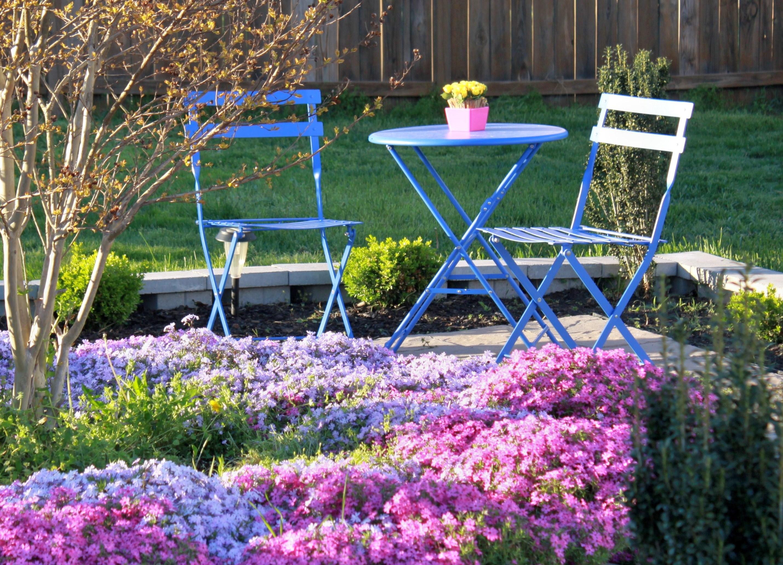 Colorful Spring Garden Afternoon Artist