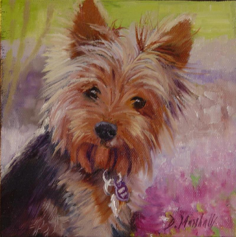 Yorkshier Terrier Dogs Oil Paintings