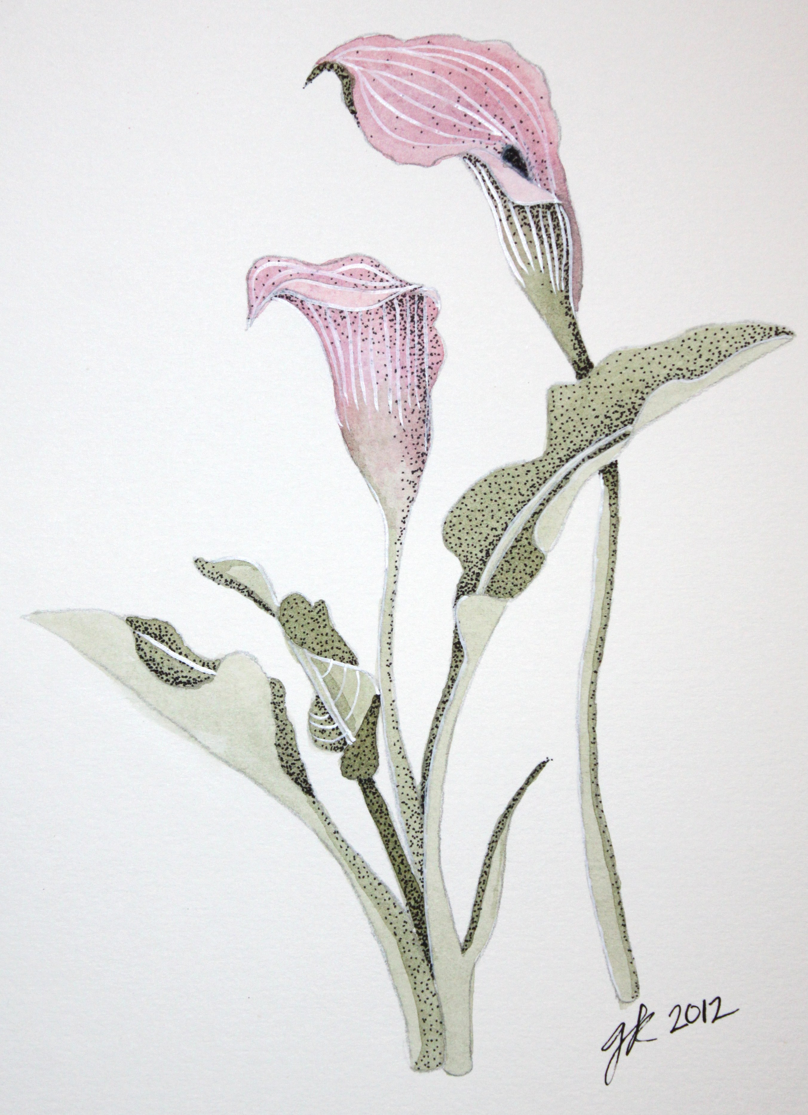 Watercolor Calla Lilies  Afternoon Artist