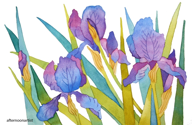 Irises in watercolor