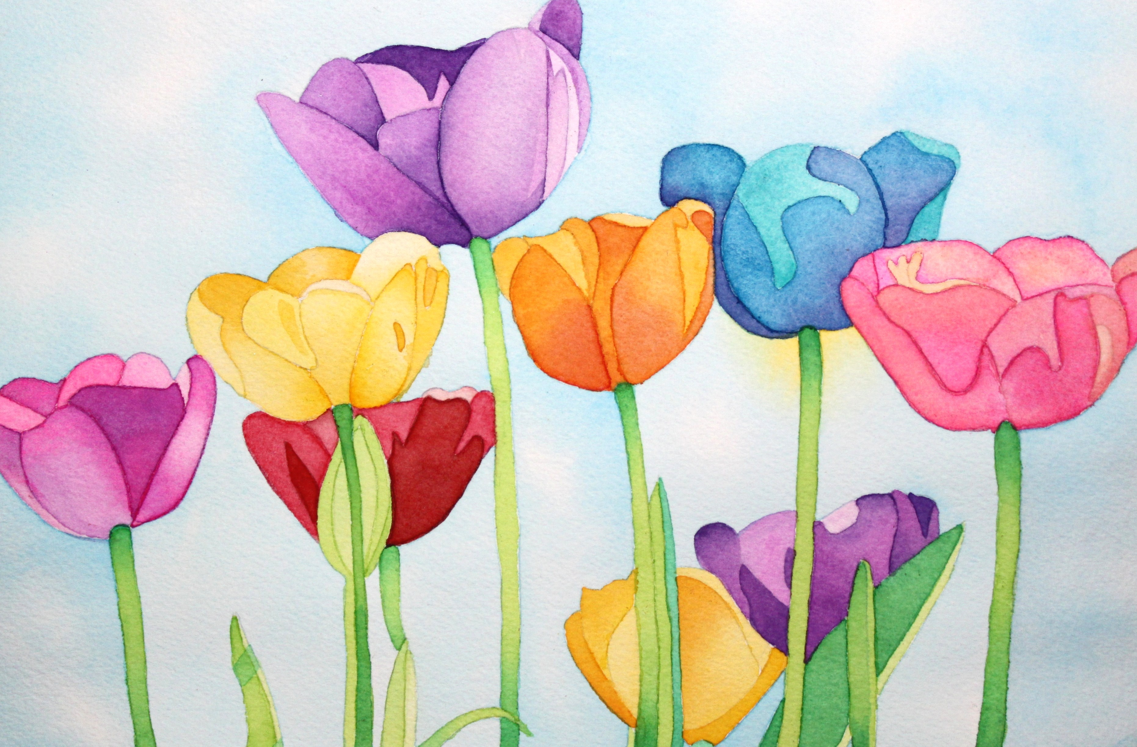 Jill's Rainbow Tulips | Afternoon Artist