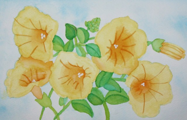 Karen's Yellow Trumpet Flowers