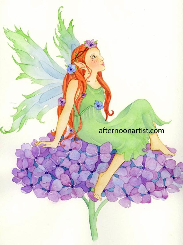 Hydrangea Fairy