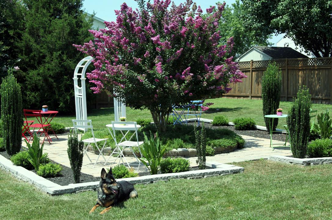 canine gardening assistants