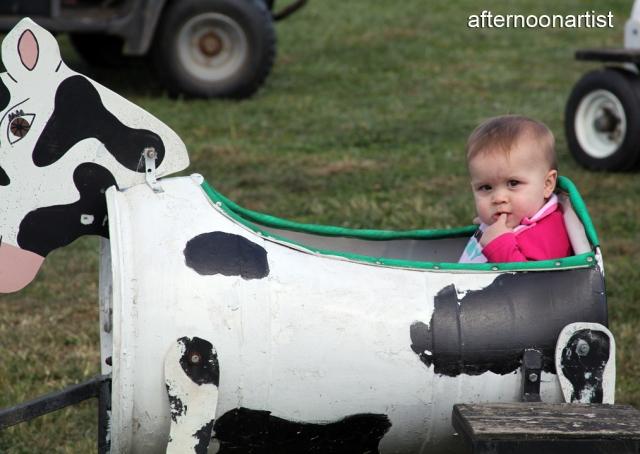 Cow carts