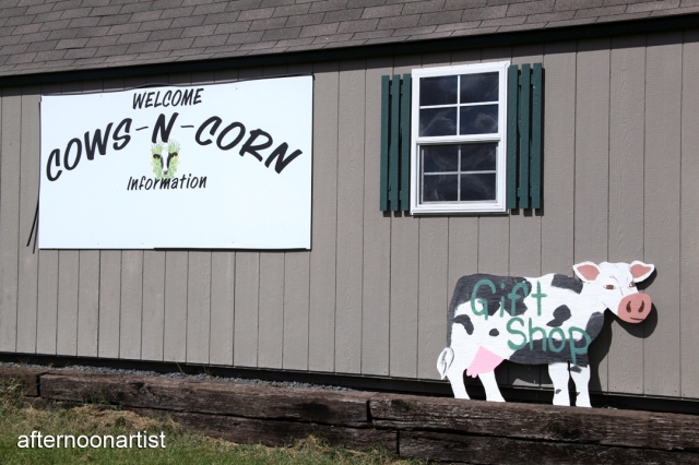 A tour of the Cows-N-Corn dairy Farm