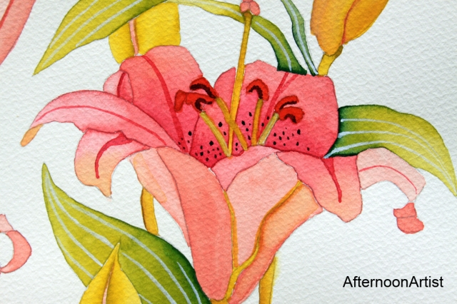 Pink lilies in watercolor--close up view