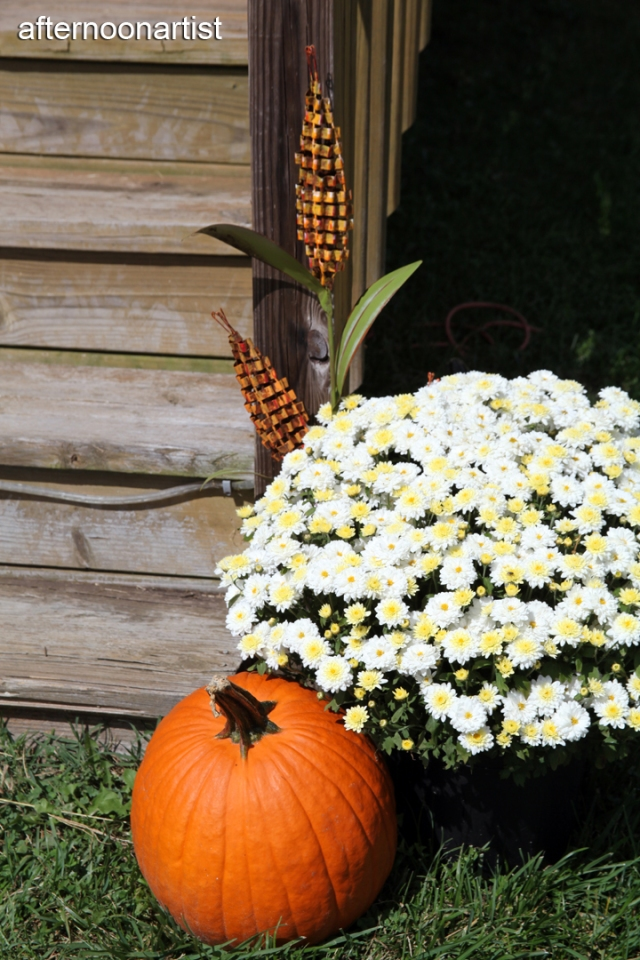 Pumpkins and corn